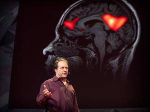 Listen to The future of psychedelic-assisted psychotherapy | Rick Doblin