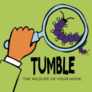 Listen to Announcing The Wildlife Of Your Home Podcourse!